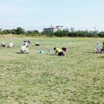 サッカー文化としてのガイナーレ鳥取。野人スタジアムって変わった名前ですね。