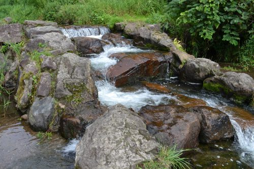 mountainstream4