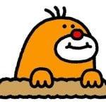 [お願い]鳥取マガジンでは皆さんからの地域情報をお待ちしてます!