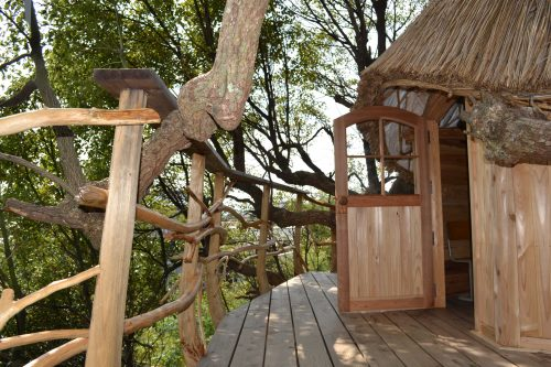treehouse6