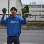 「おもちゃ畑」として、イオンモール日吉津、米子駅前イオンに(不定期的に)ブロッコリーを売っています!