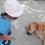 [大山トムソーヤ牧場]小さいお子さんがいる家庭におすすめ。大山観光にもぴったり。