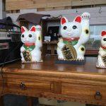[米子市]謎の店「テブラボシカ(tebulabsica)」移転OPEN10月22日(日)猫グッズがたくさんあったよ。